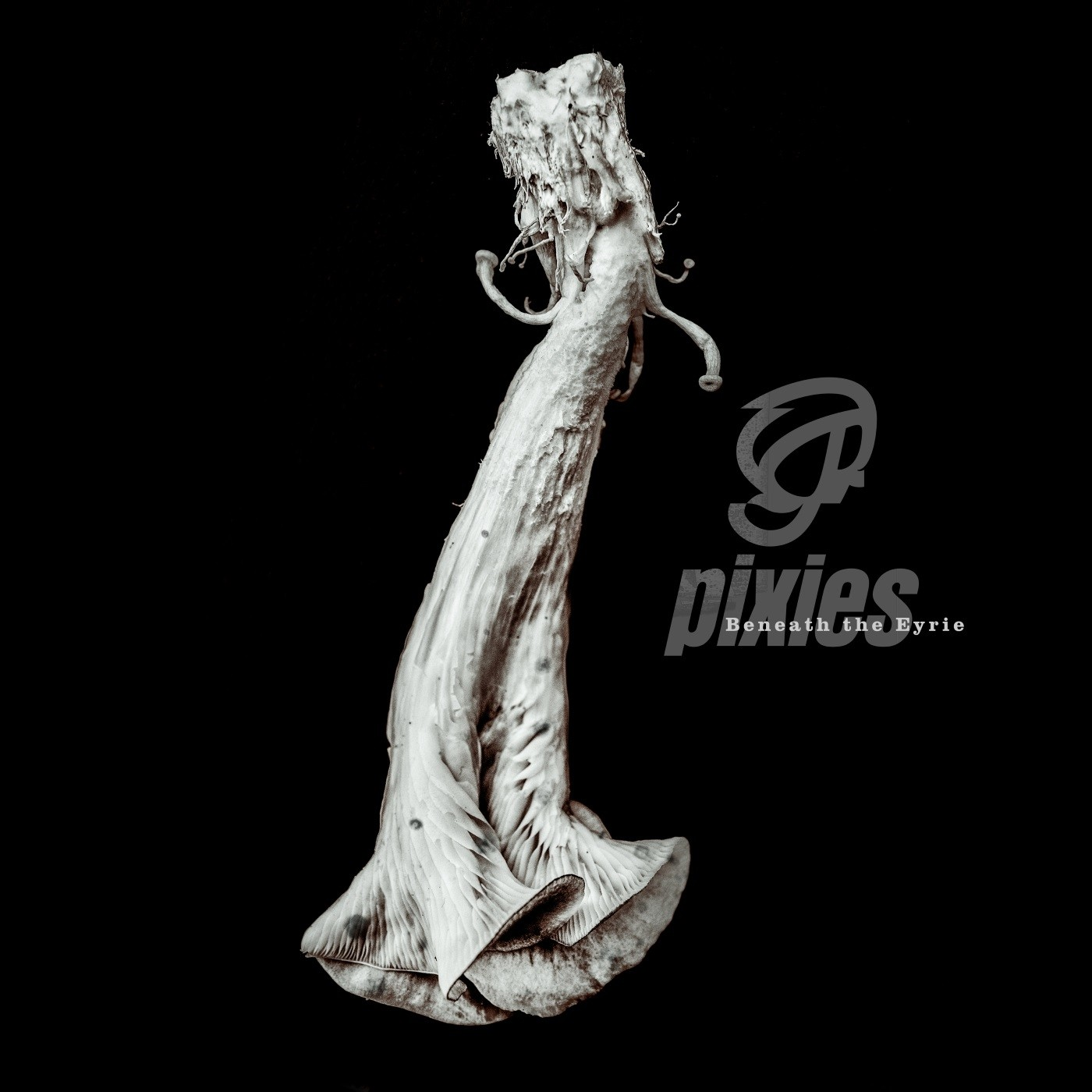 Pixies - Beneath the Eyrie - CD