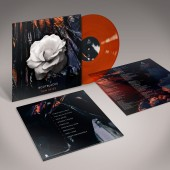 Bootblacks - Thin Skies (Limited Orange Vinyl) - LP/Vinyl