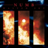 Numb - Wasted Sky (Limited Edition) - LP