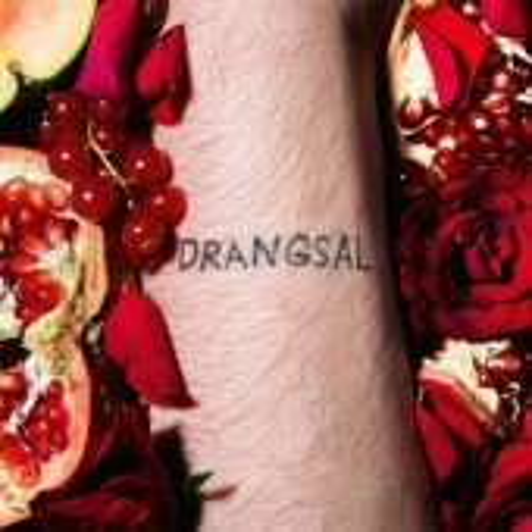 Drangsal - Harieschaim - CD
