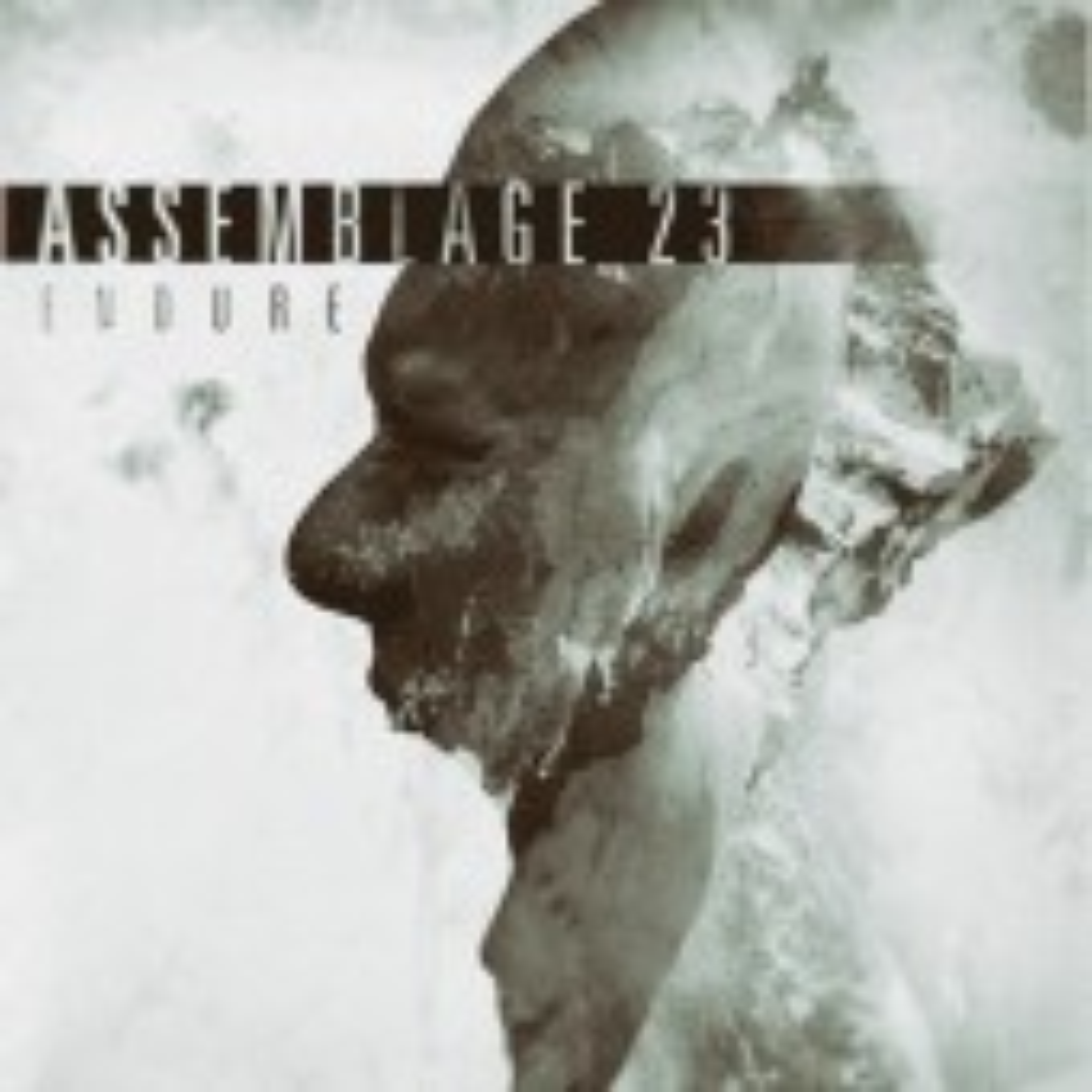 Assemblage 23 - Endure - LP