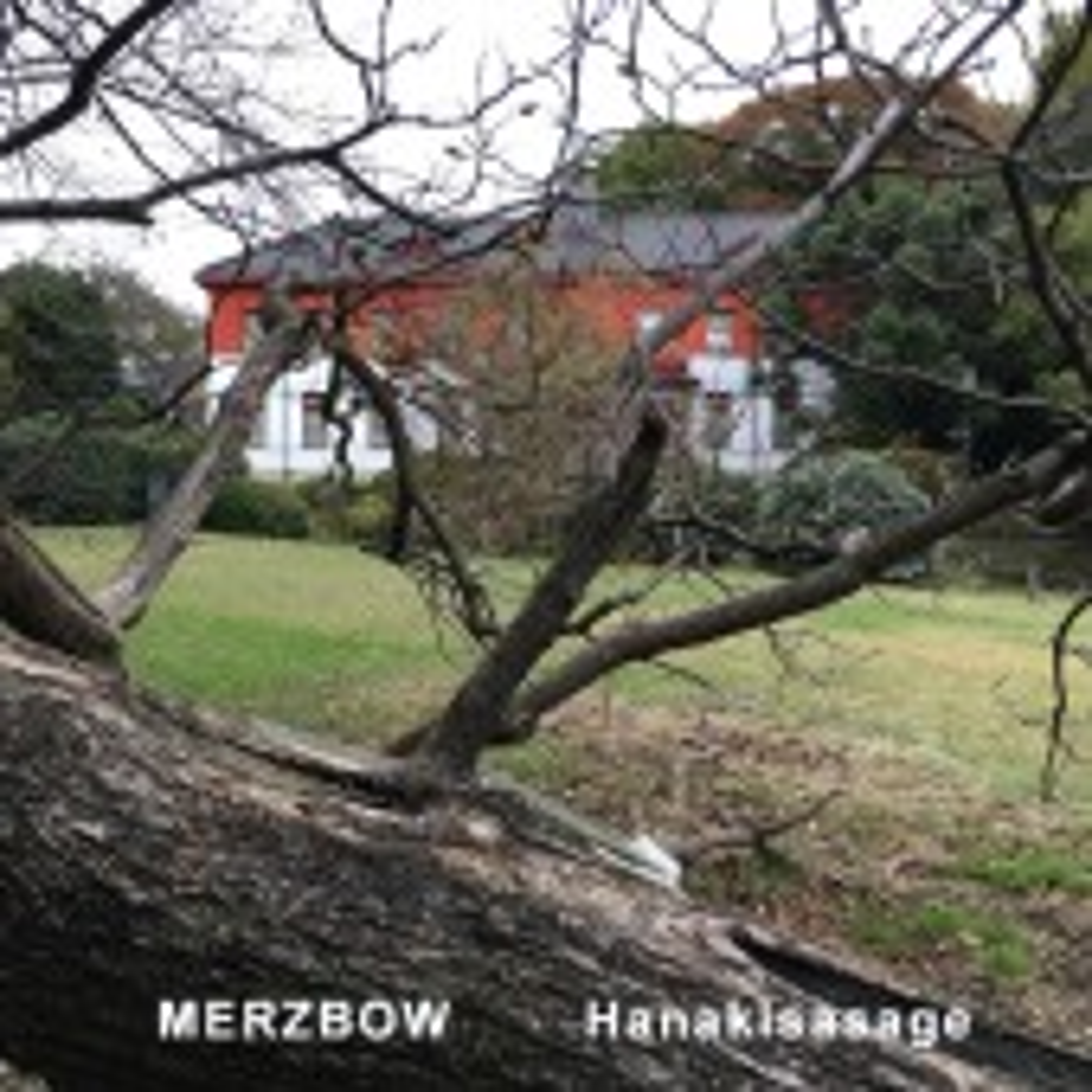 Merzbow - Hanakisasage - CD