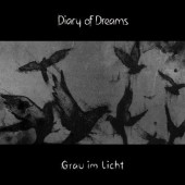 Diary Of Dreams - Grau im Licht - CD
