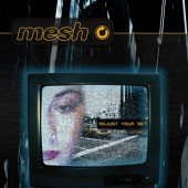Mesh - Adjust your Set - Maxi CD
