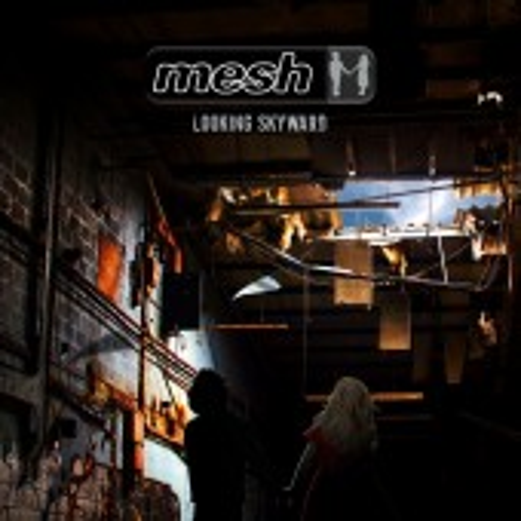 Mesh - Looking Skyward - 2LP