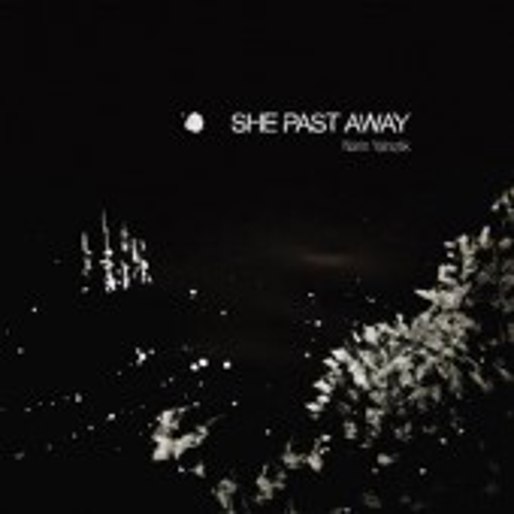 She Past Away - Narin Yalnizlik - CD